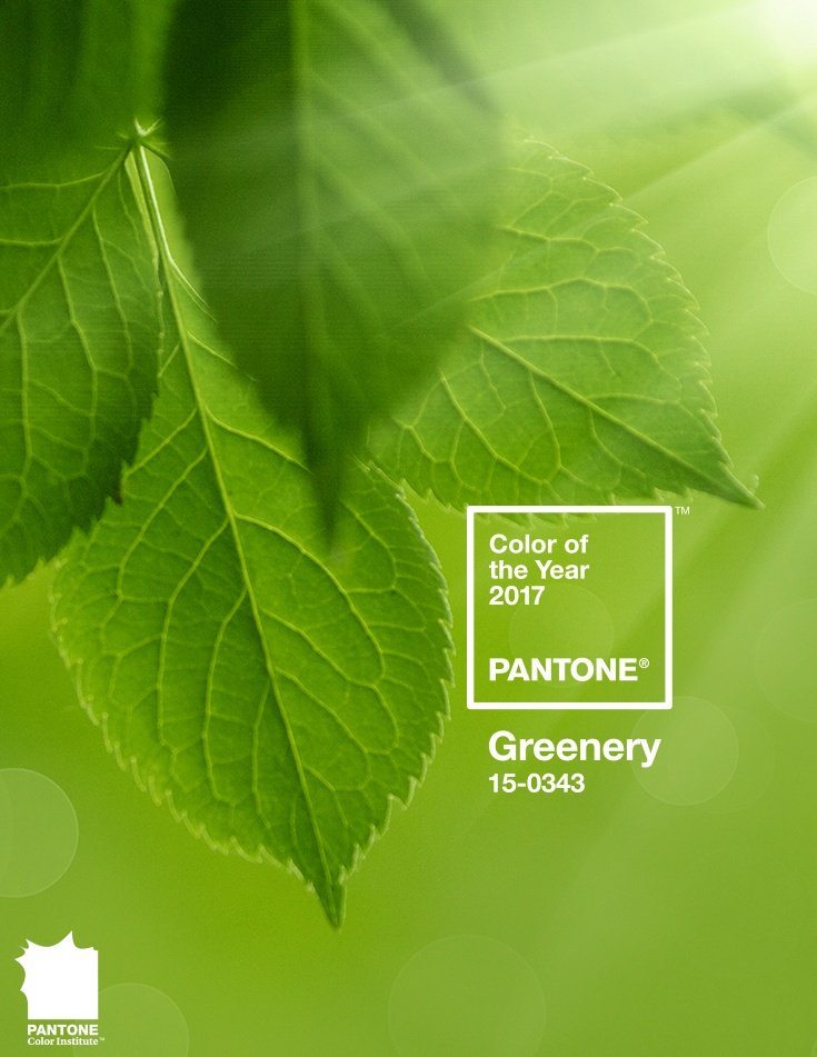 2017Pantone  Color of the Year - Greenery