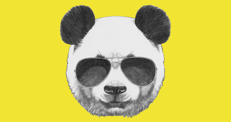 Google Panda-01.png