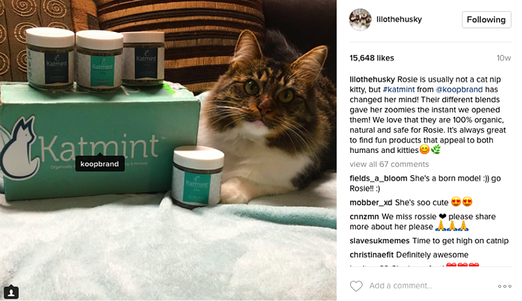 Example of an Instagram Post that uses Social Mentions and Tagging to elicit engagement