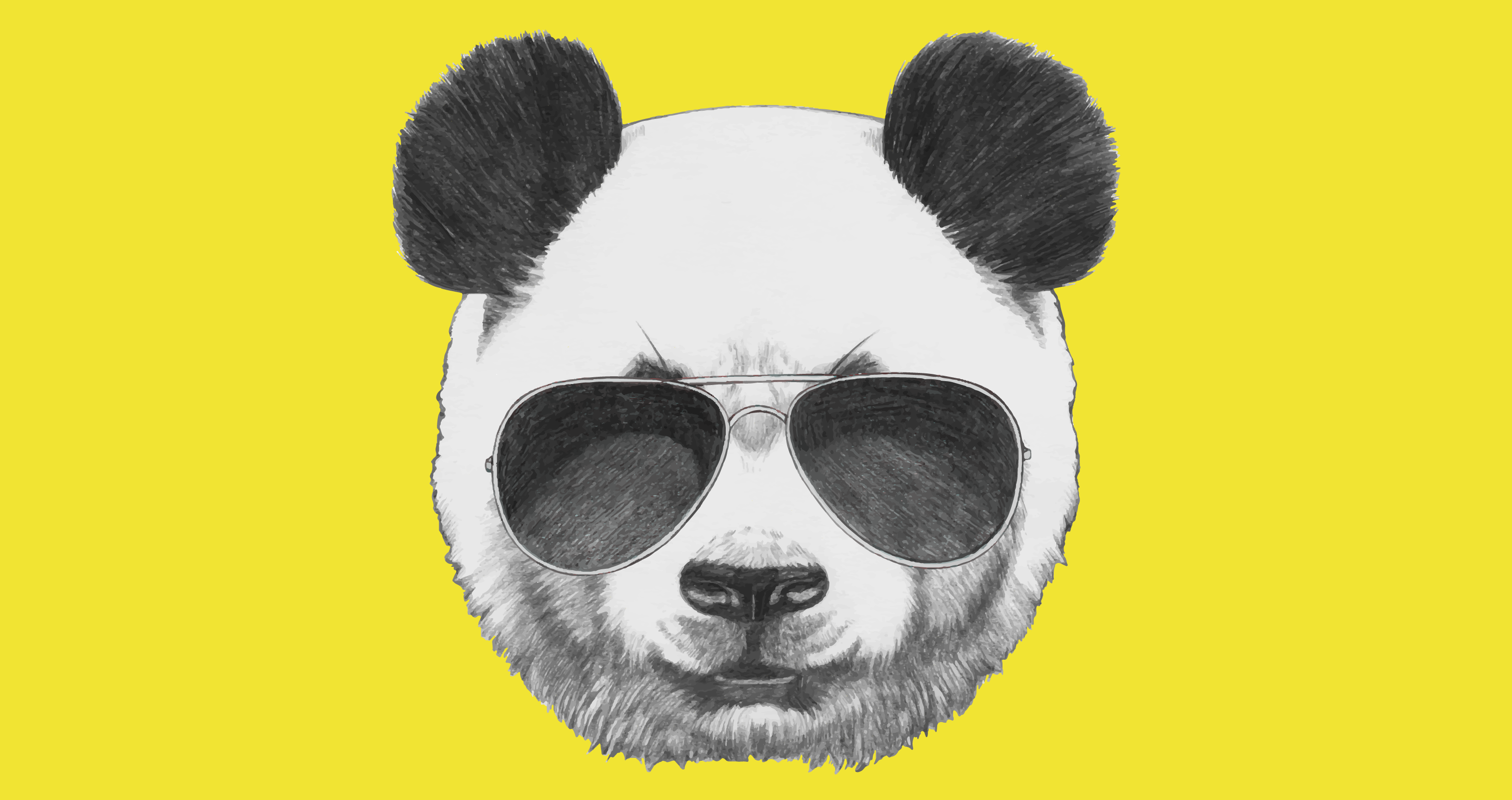 What's a Google Panda and How Does It Affect My SERP Ranking?